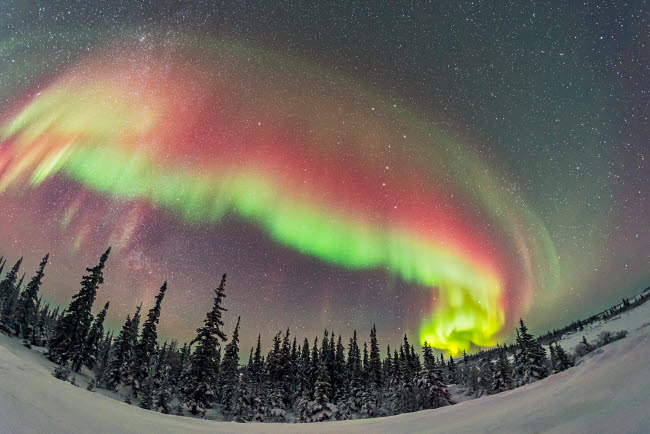 ADY200379S © Stocktrek Images, Inc. A colorful auroral arc developing over the boreal forest in Manitoba, Canada.
