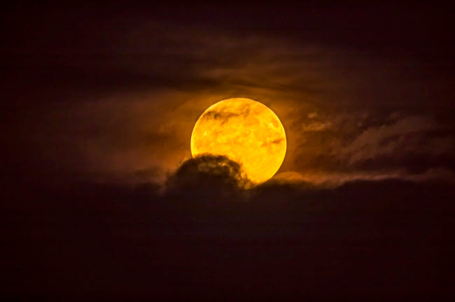 ADY200413S © Stocktrek Images, Inc. The golden yellow Harvest Moon rising through low clouds.