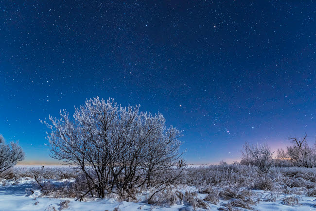ADY200452S © Stocktrek Images, Inc. Orion and the stars of a northern winter rising over a snowy landscape in Canada.