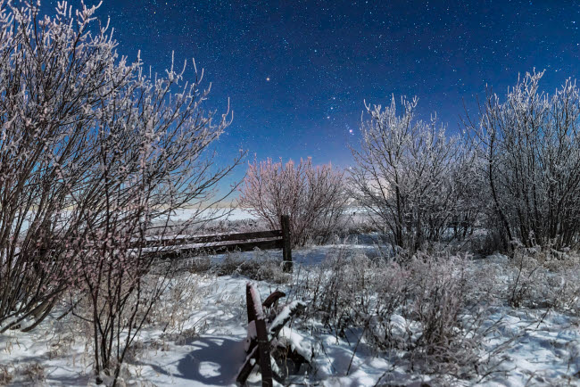ADY200459S © Stocktrek Images, Inc. Orion rising in the moonlight over an old fence in southern Alberta, Canada.