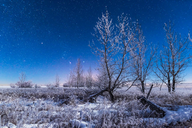 ADY200460S © Stocktrek Images, Inc. Orion rising in the moonlight over a snowy landscape in southern Alberta, Canada.