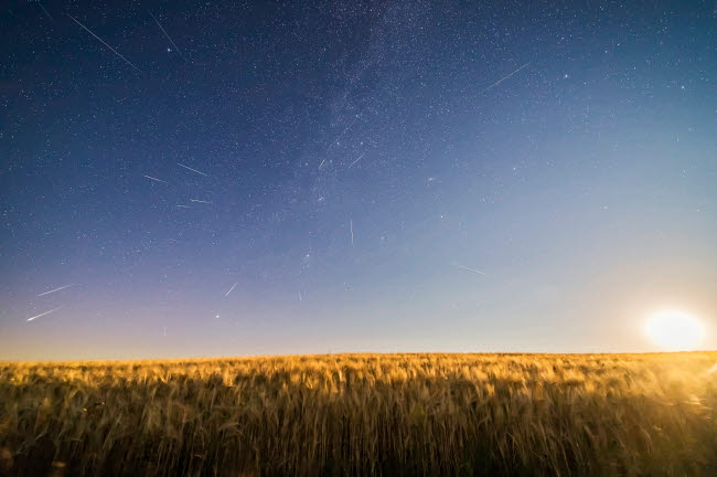 ADY200470S © Stocktrek Images, Inc. Perseid meteor shower over a moonlight wheat field in Canada.