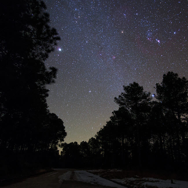 JFD200061S © Stocktrek Images, Inc. Stars shine above the woods in the Yunnan province of China.