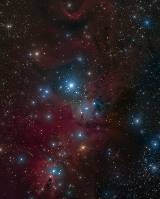 MCM200035S © Stocktrek Images, Inc. The Christmas Tree Cluster and Cone Nebula