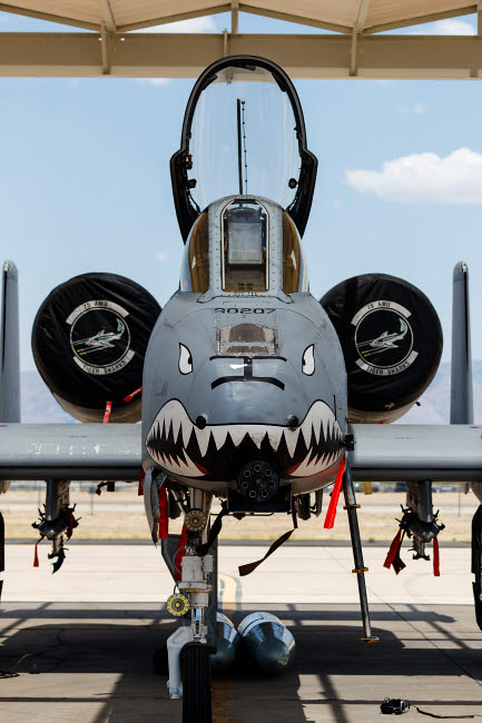 RDG100227M © Stocktrek Images, Inc. A U.S. Air Force A-10 Thunderbolt II parked at Davis Monthan Air Force Base.