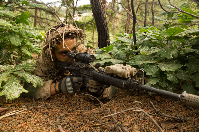 STK108901M © Stocktrek Images, Inc. U.S. Marine scout sniper provides security for his unit in South Korea.