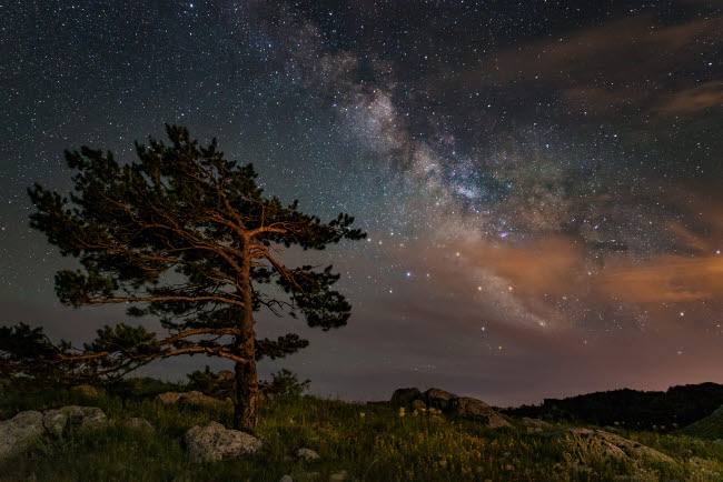 YZV200016S © Stocktrek Images, Inc. A lone tree on top of a mountain under the stars and Milky Way, Crimea.