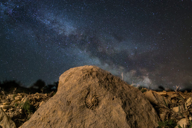 YZV200020S © Stocktrek Images, Inc. Fossilized ammonite and the Milky Way on a mountain top in Russia.